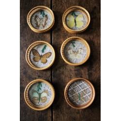Un lot de 6 Dessous de verre ronds Bambou Vintage Papillons